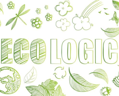 Rispettare l'ambiente: noi scegliamo da sempre l'ecologico!